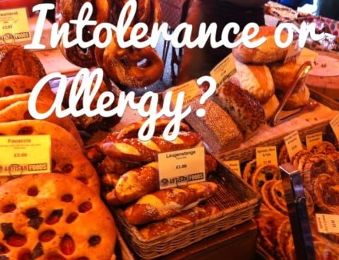 Intolerance or Allergy?